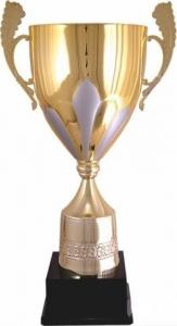 Кубок 2001