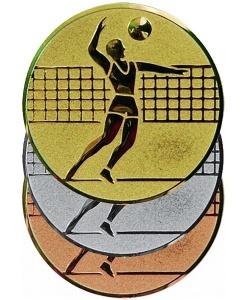 Вкладыш Волейбол A6