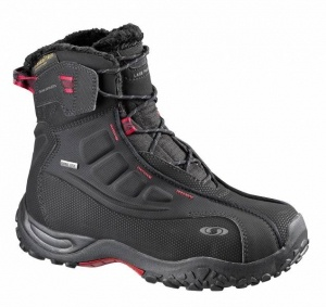 Треккинговые ботинки Salomon B52 TS GTX W (женские)