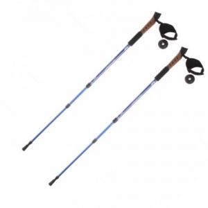 Палки для скандинавской ходьбы Onlitop 2 раздвижные