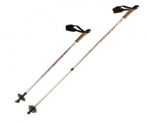 Палки для скандинавской ходьбы Larsen Nordic раздвижные